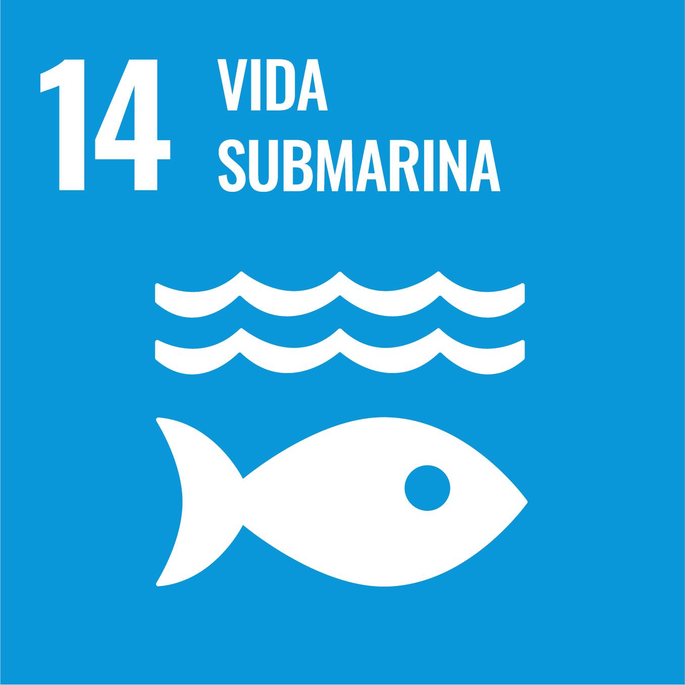 Vida Submarina - Objectiu 14