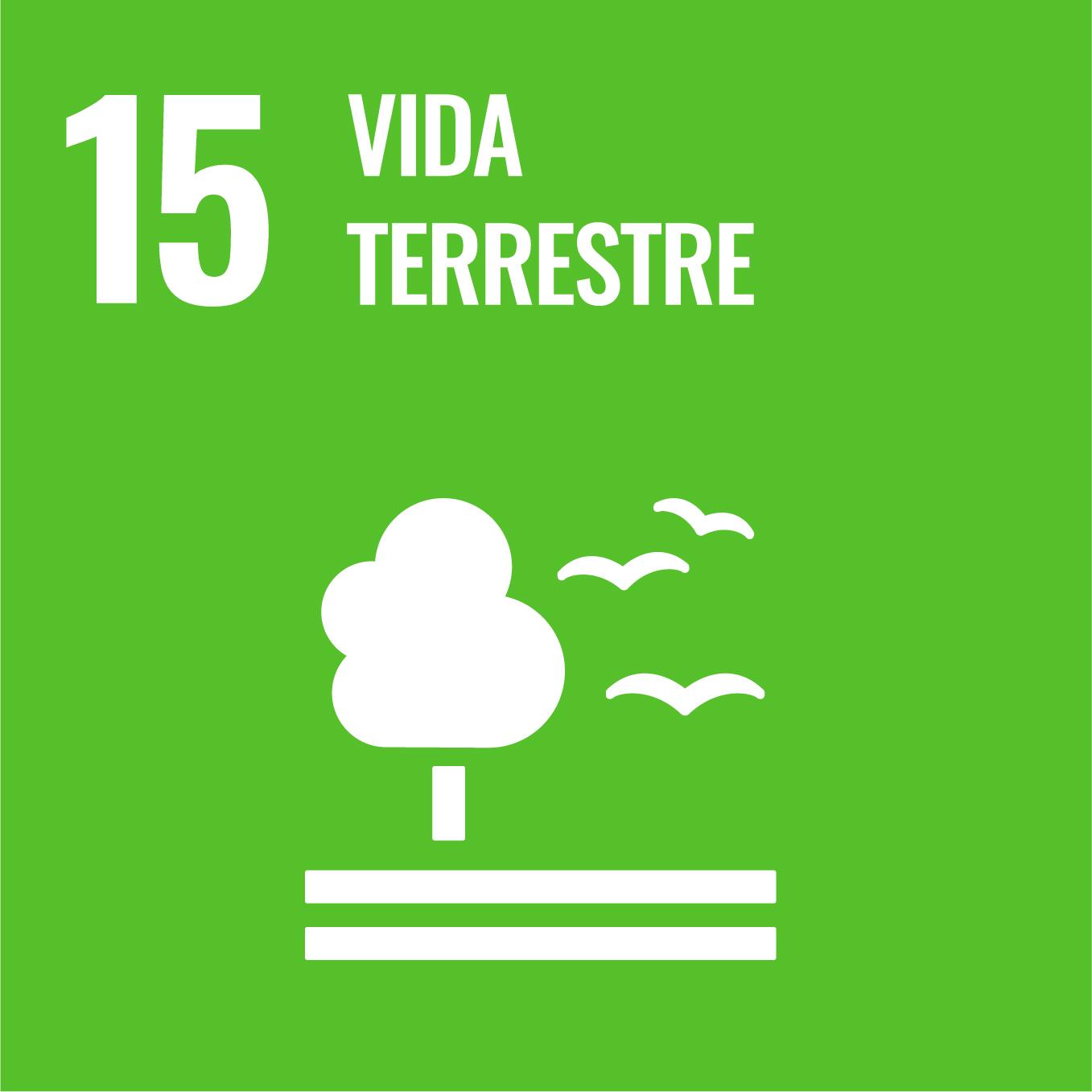 Vida d'Ecosistemes Terrestres - Objectiu 15