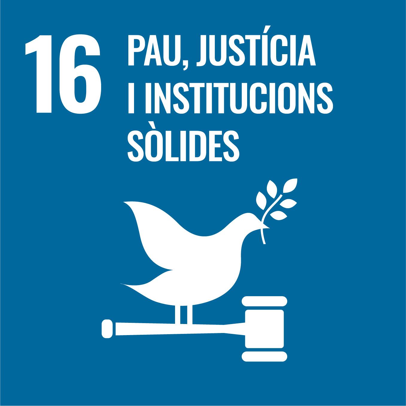 Pau, Justícia i Institucions sòlides - Objectiu 16