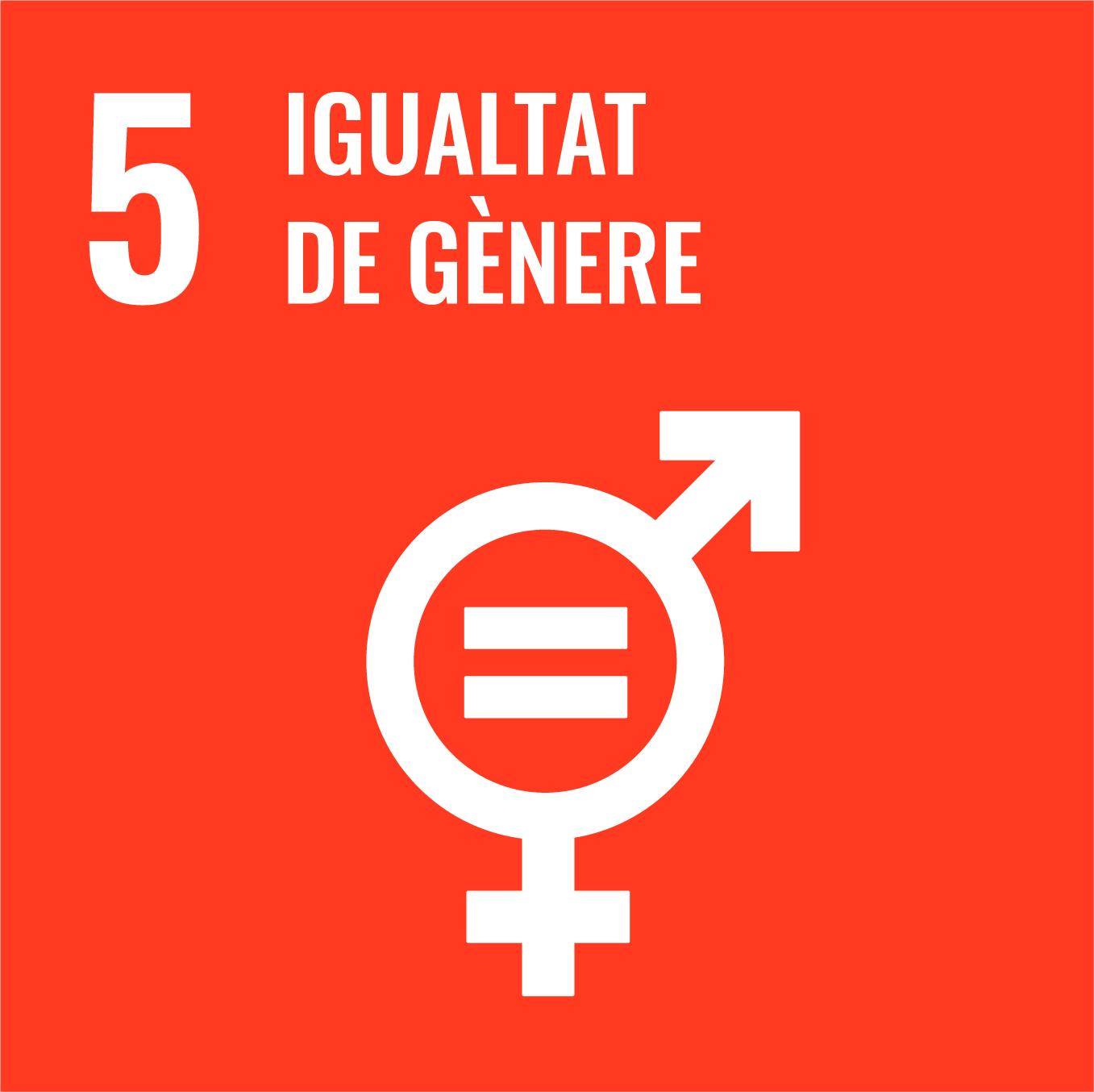 Igualtat de Gènere - Objectiu 5