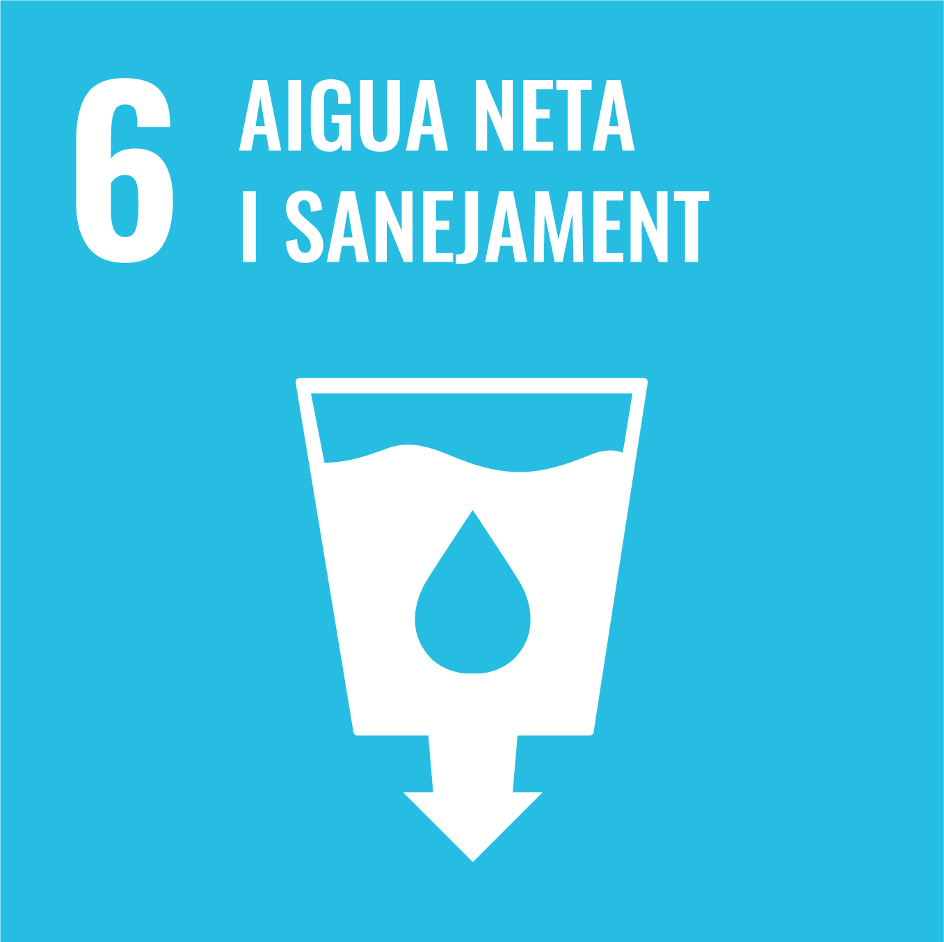 Aigua Neta i Sanejament - Objectiu 6
