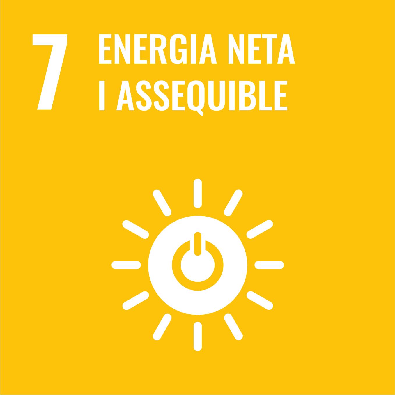 Energia neta i assequible - Objectiu 7