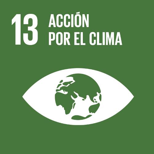 Acción por el Clima - Objetivo 13