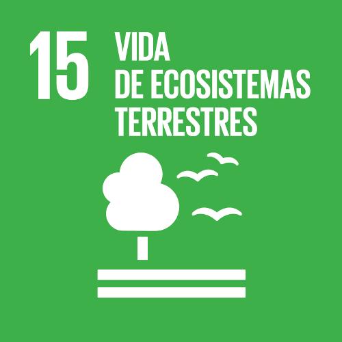 Vida de Ecosistemas Terrestres - Objetivo 15